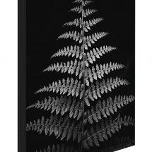 Block - dark fern